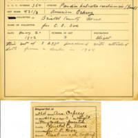 Thomas Wilmer Dewing, egg card # 647u