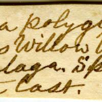 Clinton Mellen Jones, egg card # 385