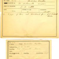 Thomas Wilmer Dewing, egg card # 528