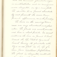 Vegetable secretions and the means by which by are effected by Kate L. Hudson, 1888, Page 19