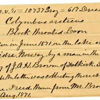 Clinton Mellen Jones, egg card # 137