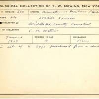 Thomas Wilmer Dewing, egg card # 437