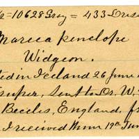 Clinton Mellen Jones, egg card # 133