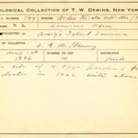 Thomas Wilmer Dewing, egg card # 146