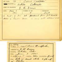 Thomas Wilmer Dewing, egg card # 279