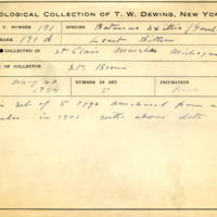 Thomas Wilmer Dewing, egg card # 136