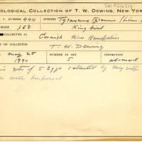 Thomas Wilmer Dewing, egg card # 333
