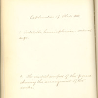 A brief description of nine species of Hepaticae found in the vicinity of Iowa City by Mary F. Linder, 1886, Page 93