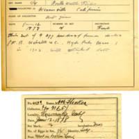 Thomas Wilmer Dewing, egg card # 304