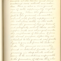 A brief description of nine species of Hepaticae found in the vicinity of Iowa City by Mary F. Linder, 1886, Page 27