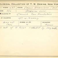 Thomas Wilmer Dewing, egg card # 665u