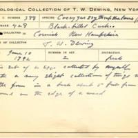 Thomas Wilmer Dewing, egg card # 274