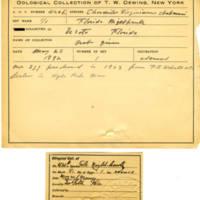 Thomas Wilmer Dewing, egg card # 321