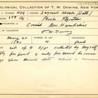 Thomas Wilmer Dewing, egg card # 349