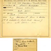 Thomas Wilmer Dewing, egg card # 296