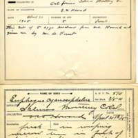 Thomas Wilmer Dewing, egg card # 686u
