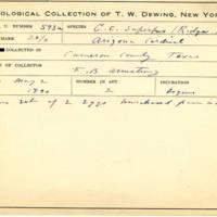 Thomas Wilmer Dewing, egg card # 480