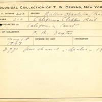 Thomas Wilmer Dewing, egg card # 155