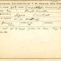 Thomas Wilmer Dewing, egg card # 776u