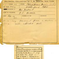 Thomas Wilmer Dewing, egg card # 068