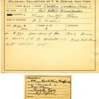 Thomas Wilmer Dewing, egg card # 298