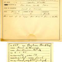 Thomas Wilmer Dewing, egg card # 522