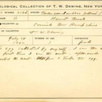 Thomas Wilmer Dewing, egg card # 836u