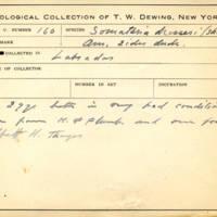 Thomas Wilmer Dewing, egg card # 119