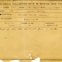 Thomas Wilmer Dewing, egg card # 489