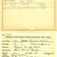 Thomas Wilmer Dewing, egg card # 457