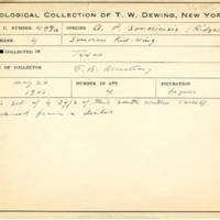 Thomas Wilmer Dewing, egg card # 671u