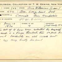 Thomas Wilmer Dewing, egg card # 245