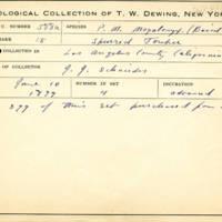 Thomas Wilmer Dewing, egg card # 702u