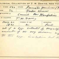 Thomas Wilmer Dewing, egg card # 691u