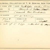 Thomas Wilmer Dewing, egg card # 786u