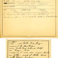 Thomas Wilmer Dewing, egg card # 387