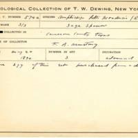Thomas Wilmer Dewing, egg card # 454
