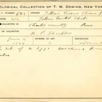 Thomas Wilmer Dewing, egg card # 545