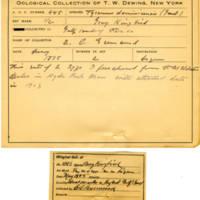 Thomas Wilmer Dewing, egg card # 336