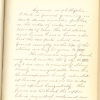 A brief description of nine species of Hepaticae found in the vicinity of Iowa City by Mary F. Linder, 1886, Page 55