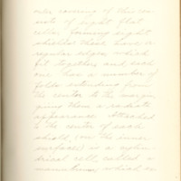 The fertilizing cell, its varying form and behavior by Nelly Peery, 1890, Page 47