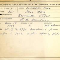 Thomas Wilmer Dewing, egg card # 211