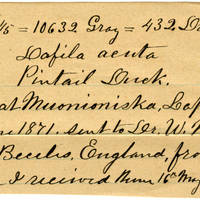 Clinton Mellen Jones, egg card # 151