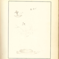 The Slime Moulds of Eastern Iowa by Minna Pryce Humphreys, 1891, Page 173