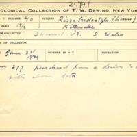 Thomas Wilmer Dewing, egg card # 026