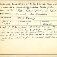 Thomas Wilmer Dewing, egg card # 290