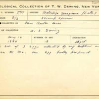 Thomas Wilmer Dewing, egg card # 700u
