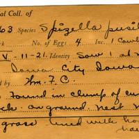 William F. Coultas, egg card # 005