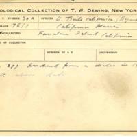 Thomas Wilmer Dewing, egg card # 021