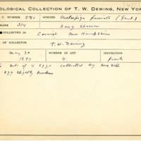 Thomas Wilmer Dewing, egg card # 696u